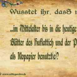 Huflattich & Pestwurz als Klopapier