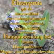 heilpflanze_ehrenpreis