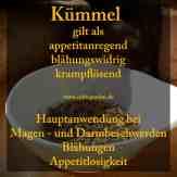 Steckbrief Kümmel