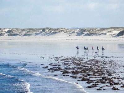 La Torche, Beach Break For Beginners, Brittany