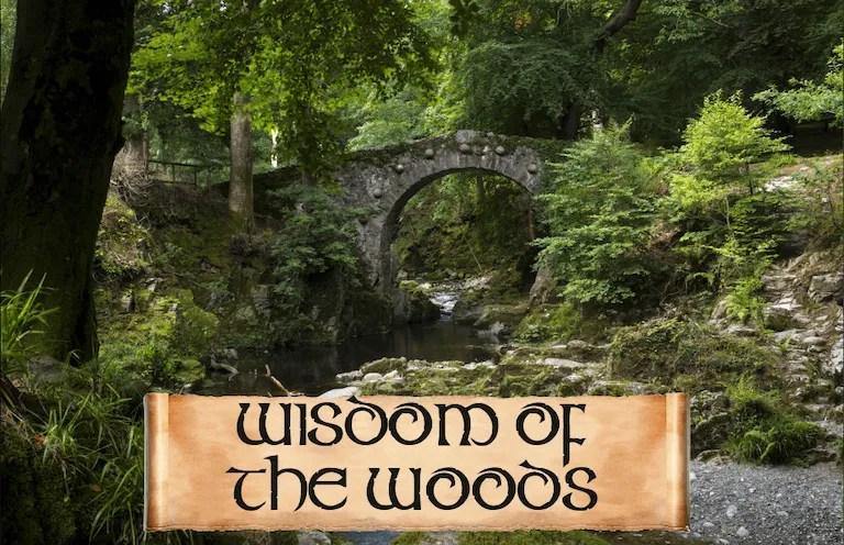 WISDOM WOODS