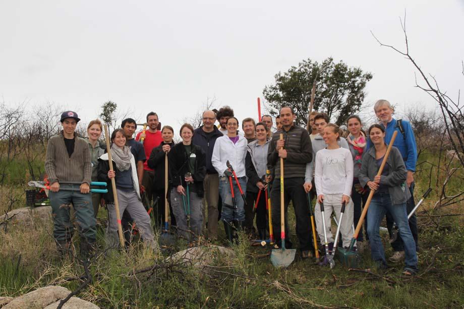 Chantier de restauration des landes à Taluyers