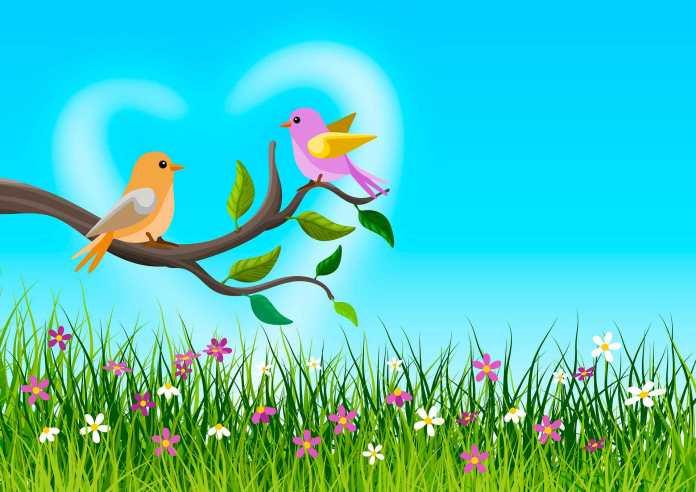horóscopo signo de cancer - passarinhos - pixabay