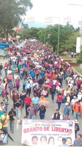 Marcha Oaxaca 10 julio 2015(8)