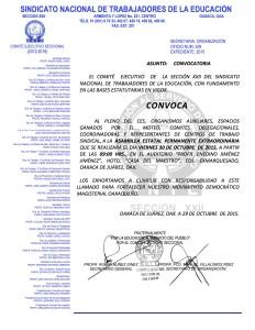 Convocatoria para la Asamblea Estatal el 30 de octubre de 2015