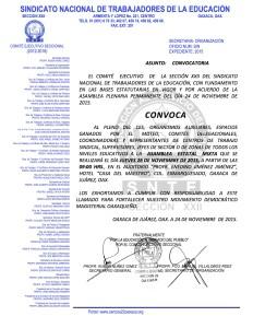 Convocatoria para la Asamblea Estatal Mixta el 26 de noviembre de 2015