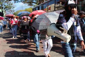 Marcha masiva estatal 29 noviembre 2015(8)