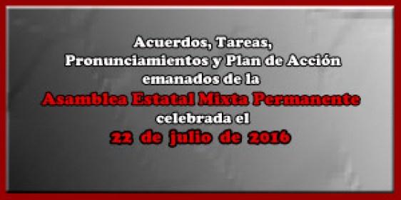 ACUERDOS Asamblea Mixta 22 julio 2016