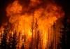 incendios florestais