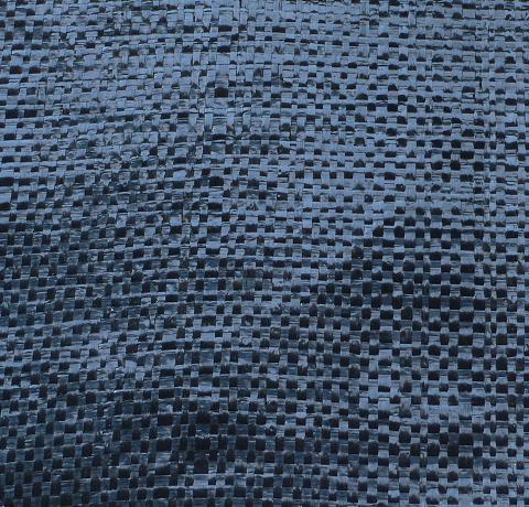 雜草抑制蓆   塑膠繩,網   化學原料及製品   綜合項分類     產品列表   中經社 CENS.com
