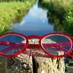 Mitos y hechos sobre la visión ¡no te dejes engañar!