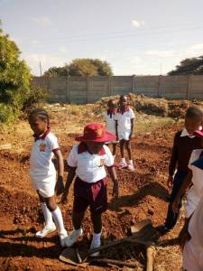 preparing-land-for agriculture-grade3-centenary