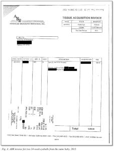 Figure 4: ABR Invoice