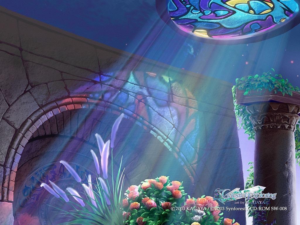 De Witte Tempel 24 | De Opbouw van het Transformatieveld