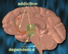 Free willers anonymous addiction-dependance
