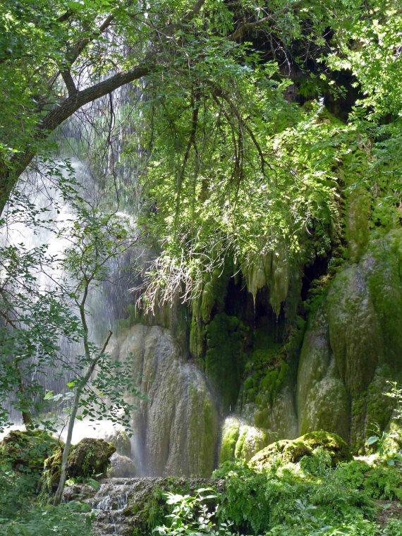 04 Gorman Falls 2014