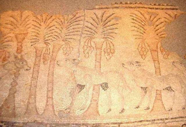 Son Fadrinet, Campos: Una Basílica Bizantina Al Sud De L'illa De Mallorca (Notes De Patrimoni)
