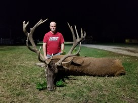 Red Stag | Bulgaria