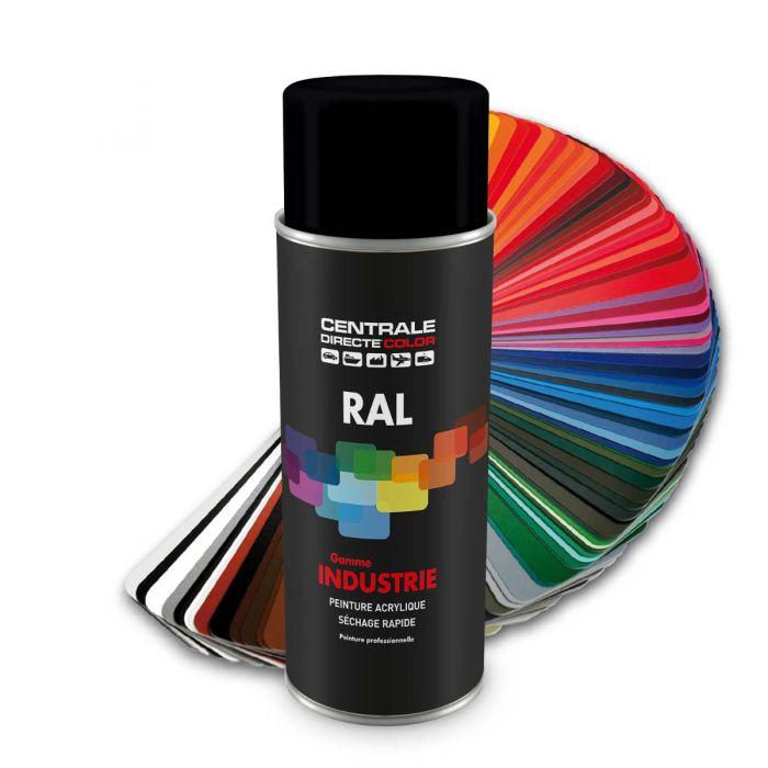 peinture en spray ral 9005 noir fonce mat
