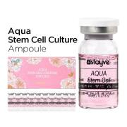 STAYVE-aqua-stem-cell-culture