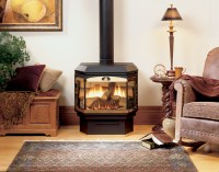 Central Fireplace - Products - Fireplaces - Belmont - Pics - 1
