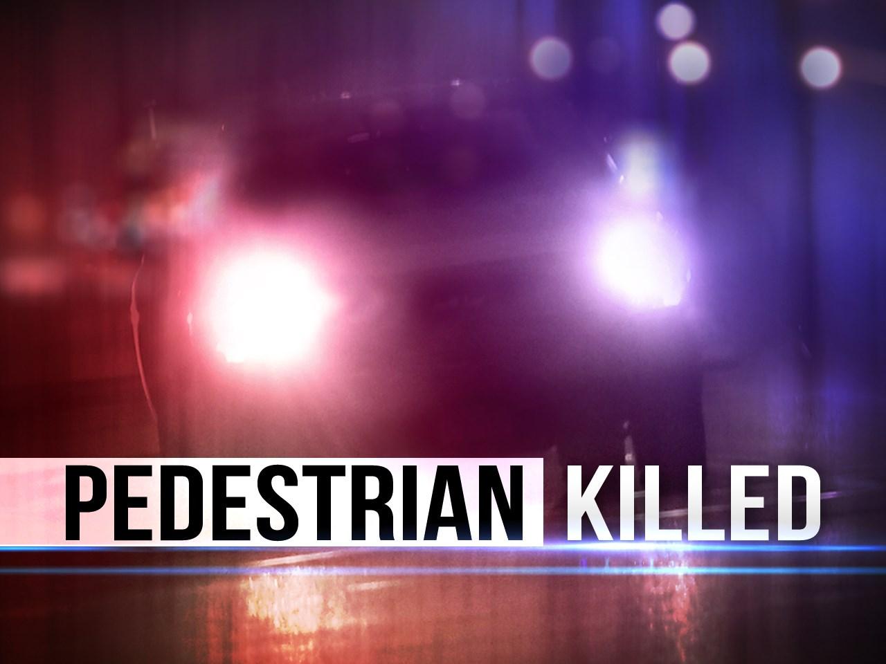 pedestrian killed_1504210924361.jpg