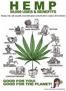 313688_edit_hemp-flier