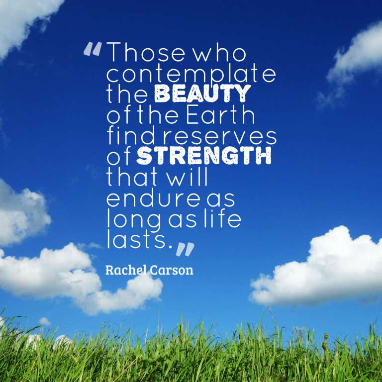 Those who contemplate the beauty of the Earth find reserves of strength that will endure as long as life lasts.