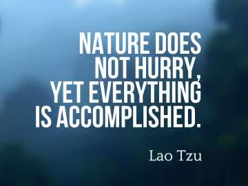 Nature does not hurry, yet everything is accomplished.