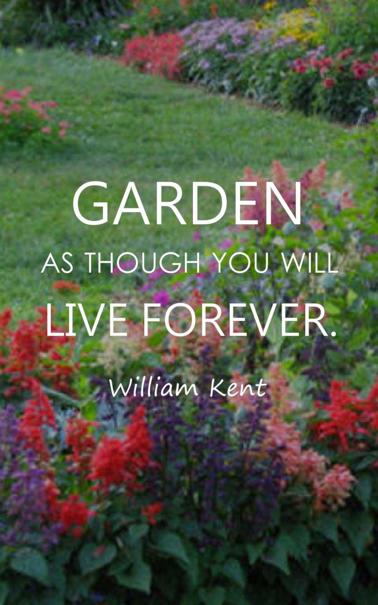 Garden as though you will live forever.