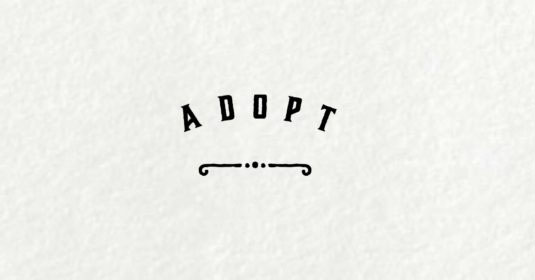 35 Adoption Quotes and Slogans