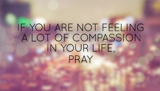 50+ Compassion Quotes