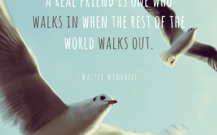 10+ Fake Friends Quotes to Help You Treasure the True Ones (BEST QUOTES FOR FRIENDS)