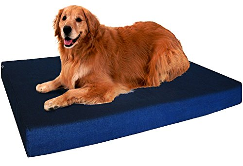 DogBed4Less chew resistant Orthopedic Memory Foam Dog Bed review