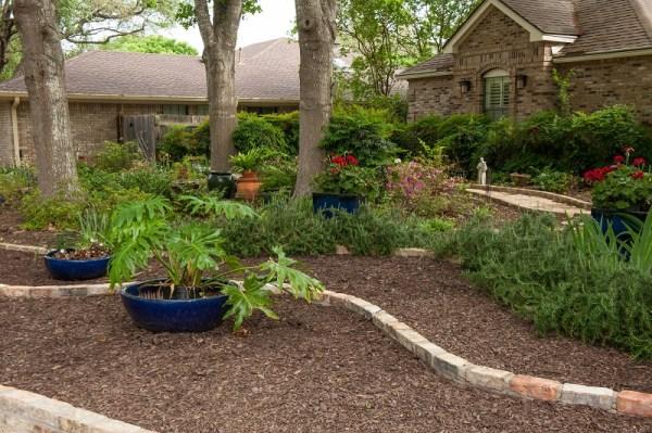 front yard makeover grass doris
