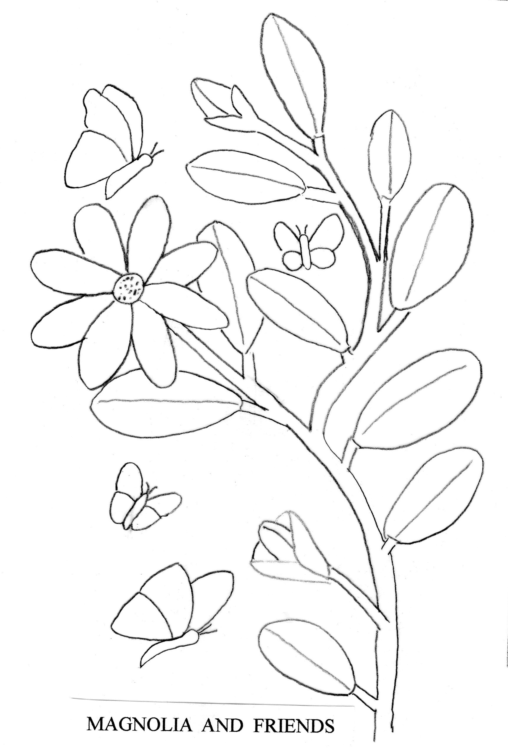 Magnolia Relief Wood Carving Pattern