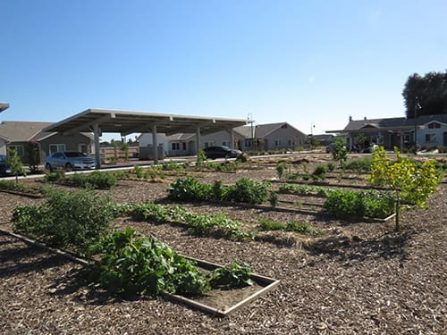 Visalia Residents Enjoy Green Space and Affordable Housing with Smart Growth Initiative