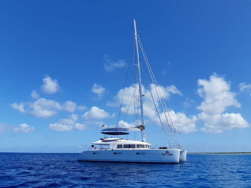 Main image of TIGER LILY yacht