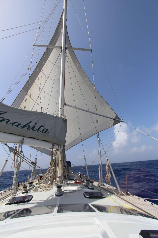 Image of ANAHITA yacht #4