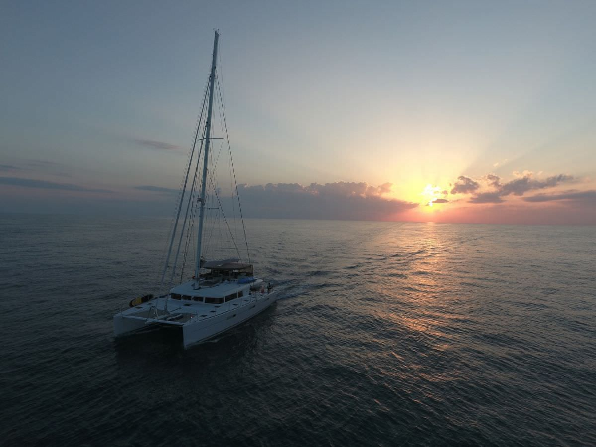 TIGER LILY yacht image # 10
