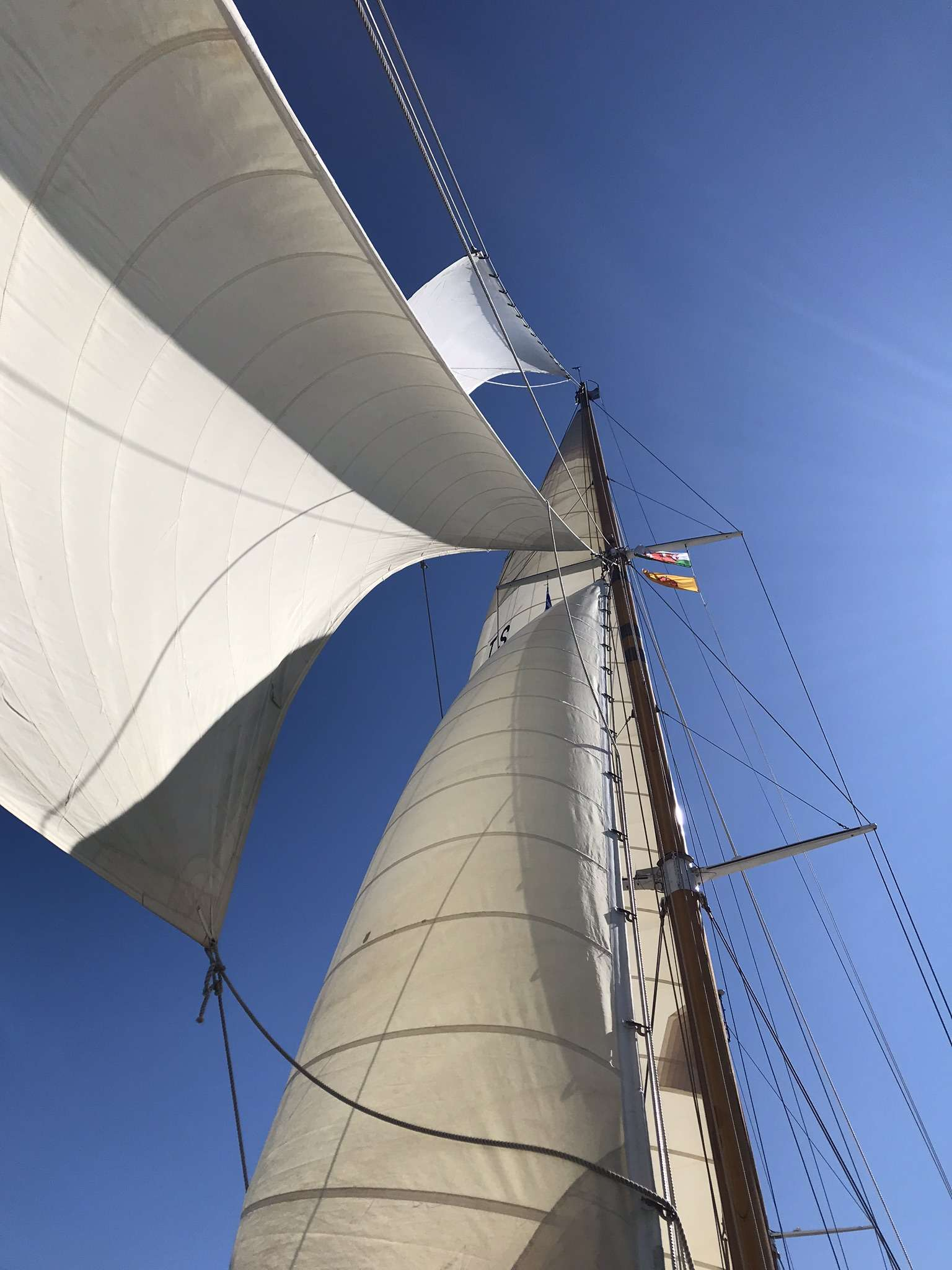 Image of Halcyon yacht #14