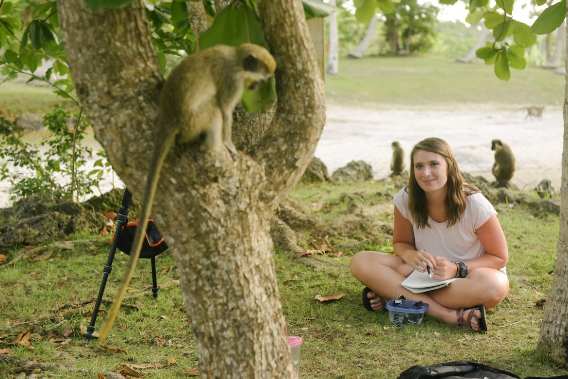 Students participate in primate research at the Barbados Wildlife Reserve
