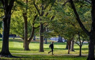 female student walking under trees on campus