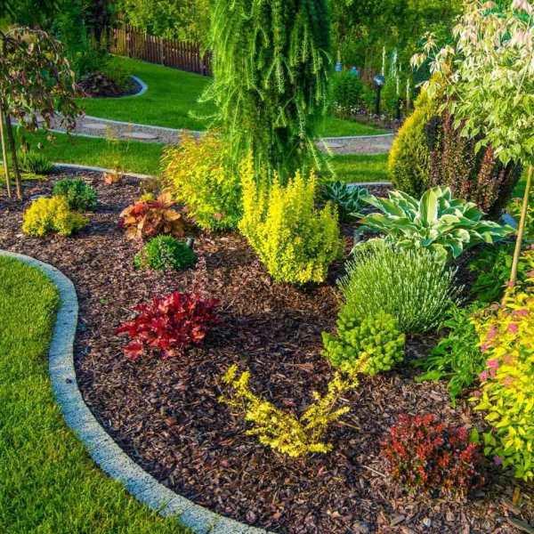 gardening and landscape design