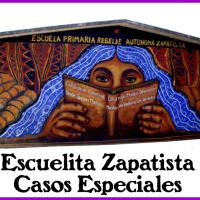 Escuelita zapatista: Casos especiales