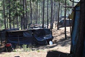 Campamento de desplazados del poblado Primero de agosto - Foto de archivo