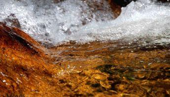 El Agua y el Tao