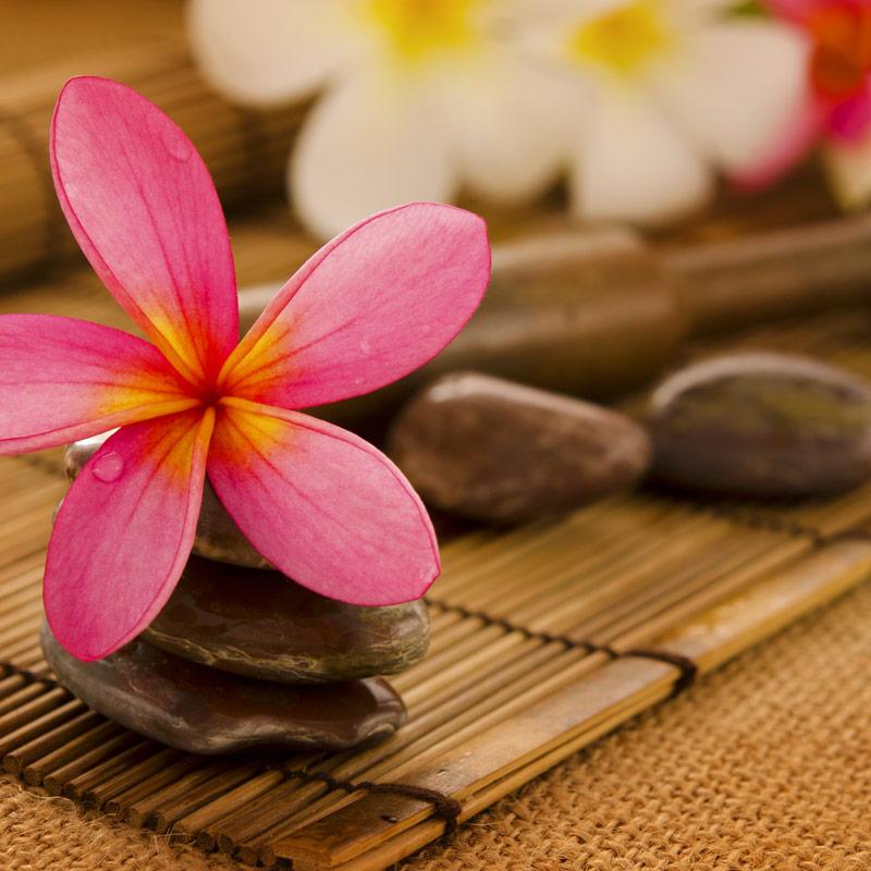 Massaggio Hot Stone  Agua de Vida  Centro Estetico e
