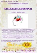 charla Inteligencia