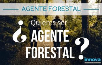 preparar oposiciones agente forestal